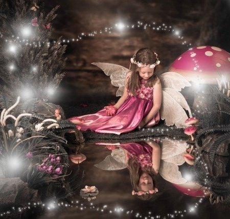 Fairy Photo Starter